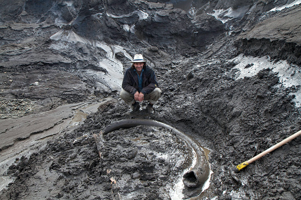 Paleontologist Tyler Kuhn with a woolly mammoth tusk emerging from the frozen ground at a placer mine at Quartz Creek. Photo courtesy of Government of Yukon