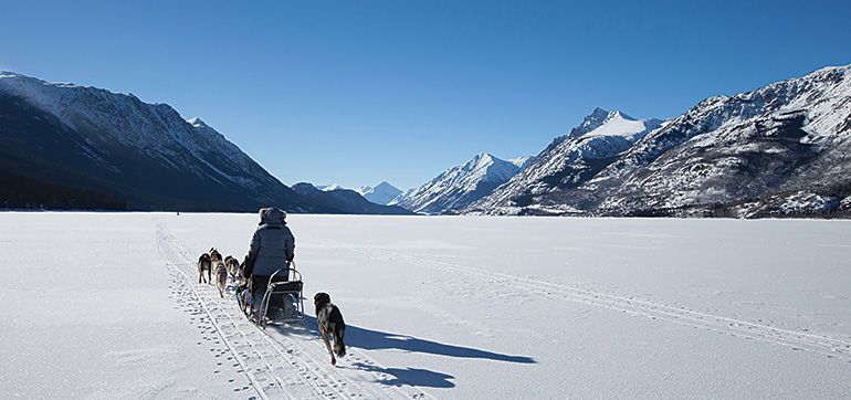Dogsledding on a frozen lake with Yukon Winter Adventures