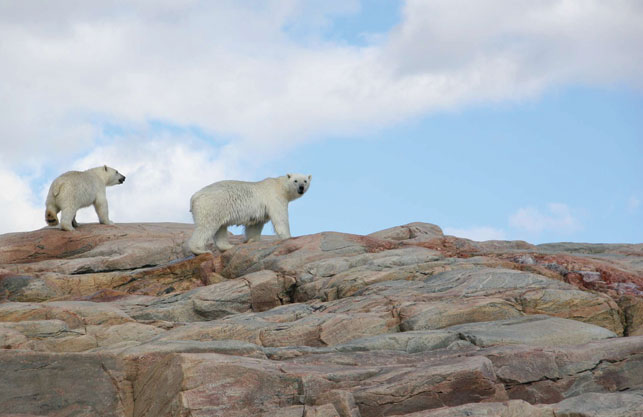Photo by Curtis Jones/Nunavut Territorial Parks and Special Places
