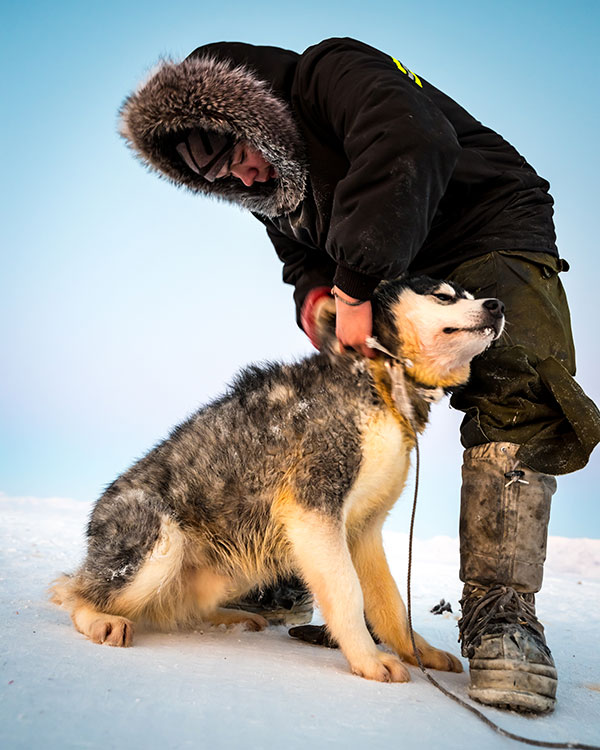 Owen Jaworenko with one of his dogs on the ice in Pond Inlet.