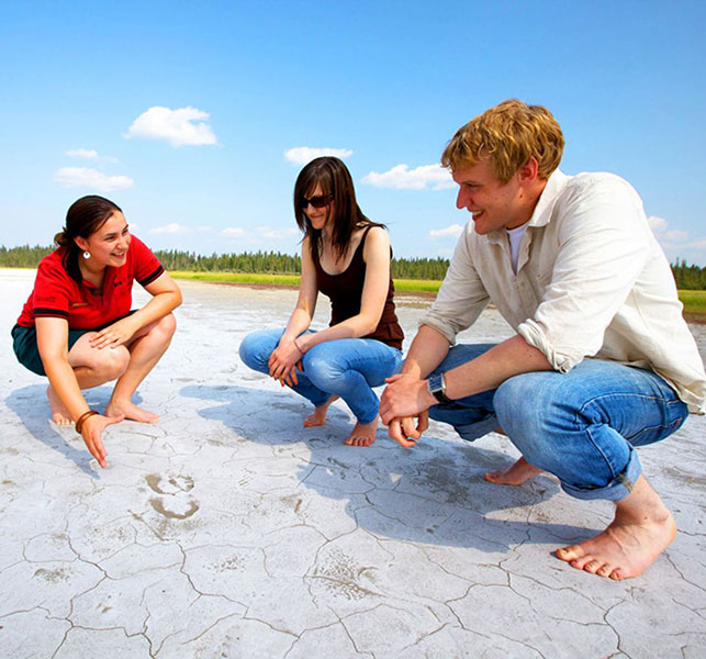 Cracking up: The salt flats at Salt Plains Lookout & Day Use. Photo by Parks Canada.